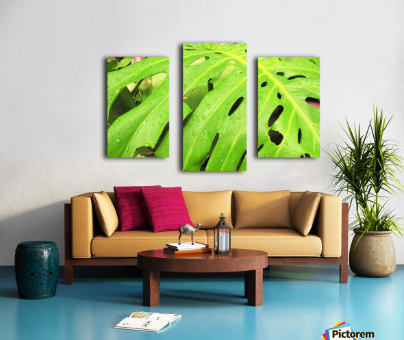 Nevis GR7 Canvas print
