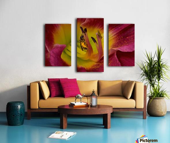 Bee Inside Corn Lily - Landscape Canvas print