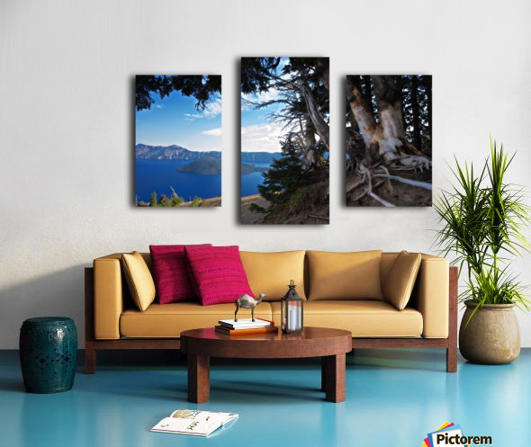 Crater Lake & Gnarled White Pine Canvas print