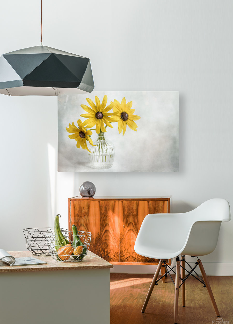 Rudbeckia  HD Metal print with Floating Frame on Back
