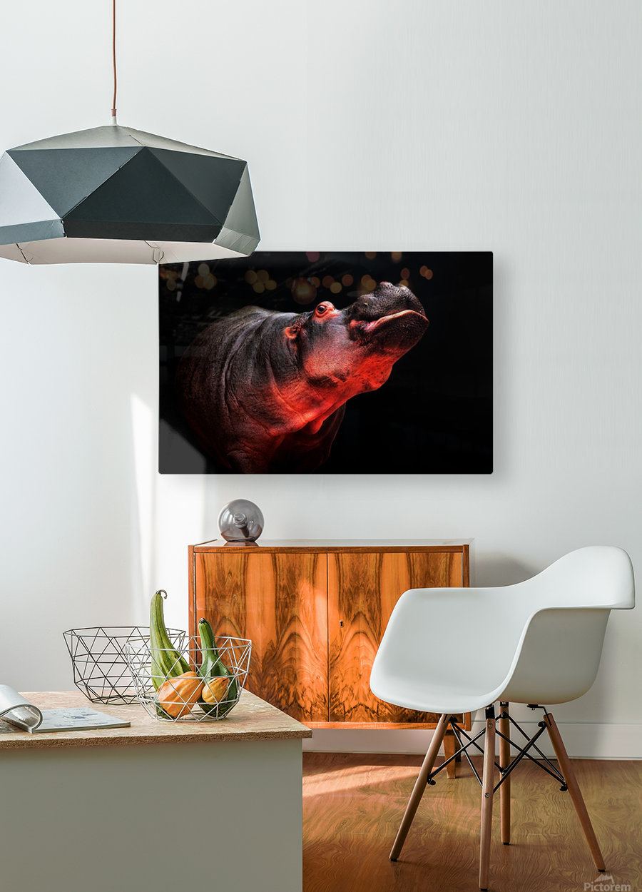 NO!  HD Metal print with Floating Frame on Back