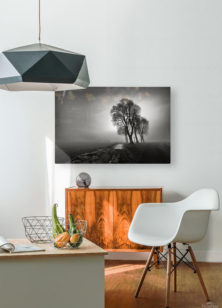 Fog  HD Metal print with Floating Frame on Back