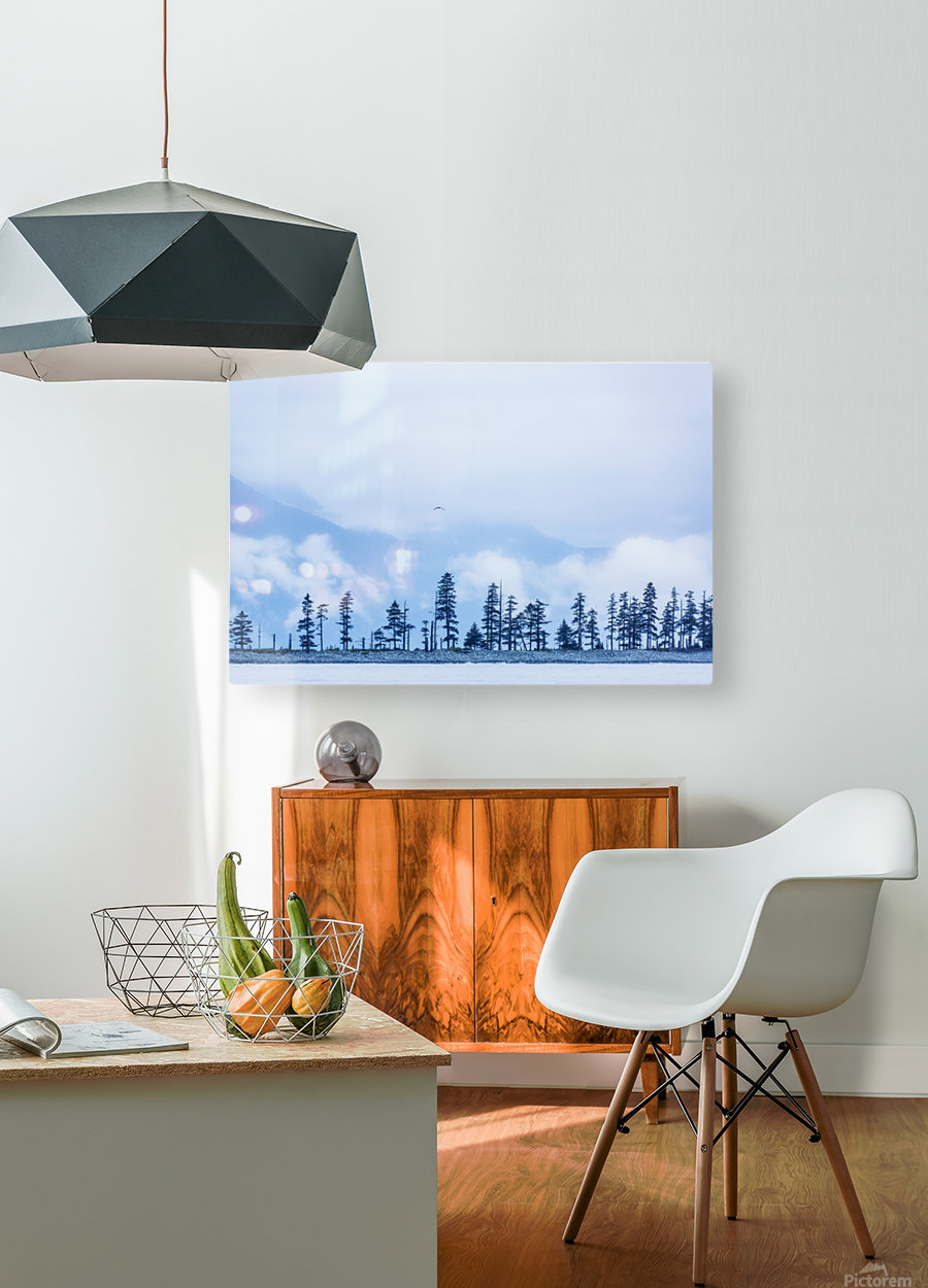 A bird flies above trees under a cloudy sky and fog on the coast of Resurrection Bay, South-central Alaska; Seward, Alaska, United States of America  HD Metal print with Floating Frame on Back