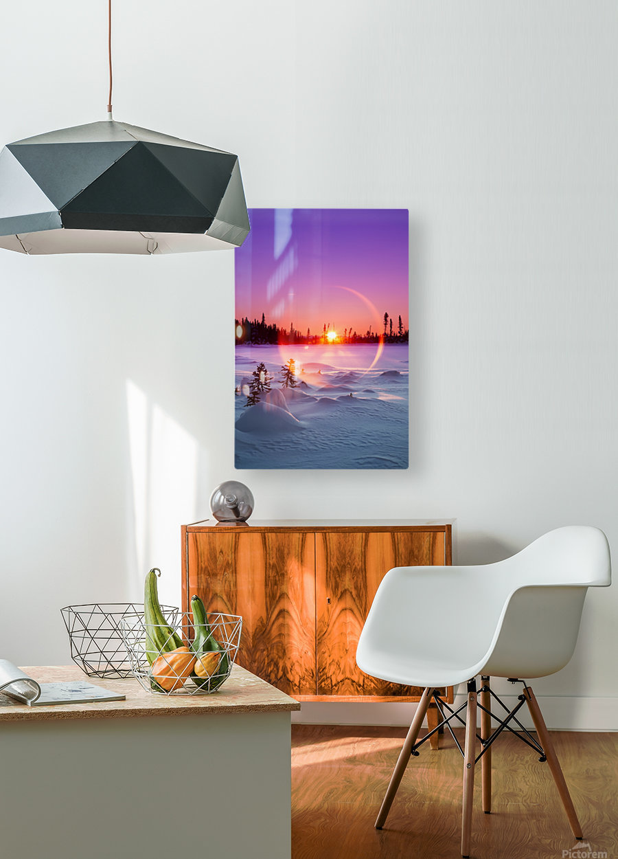 Sun flare glowing over a winter landscape; Trapper Creek, Alaska, United States of America  HD Metal print with Floating Frame on Back