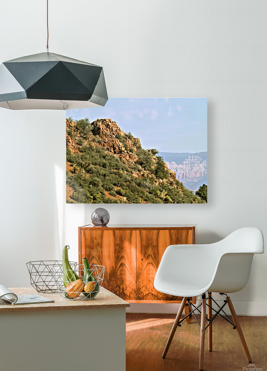 Jerome-5  HD Metal print with Floating Frame on Back