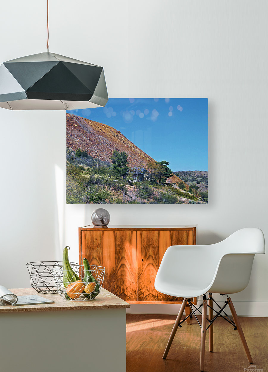 Jerome-4  HD Metal print with Floating Frame on Back