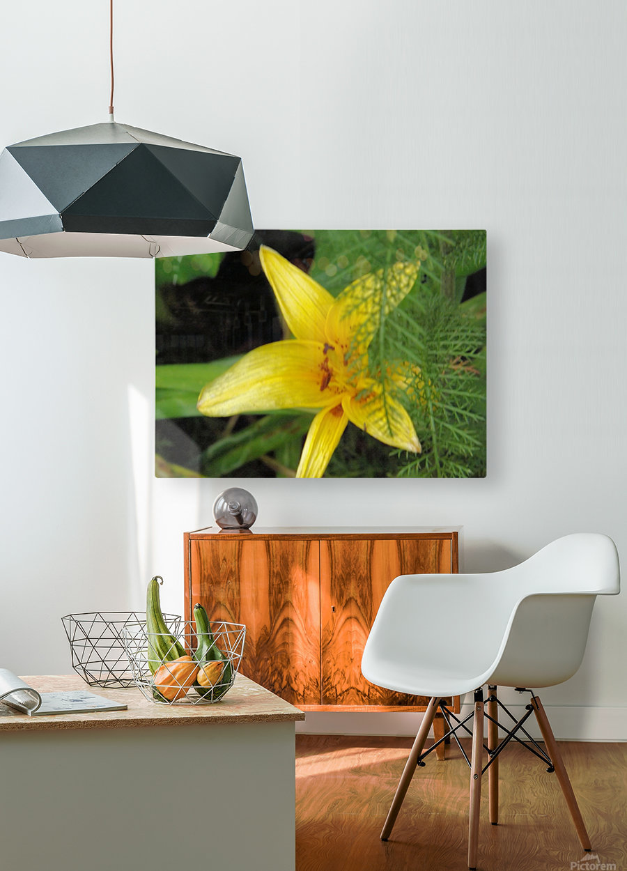 Yellow Flower-2  HD Metal print with Floating Frame on Back