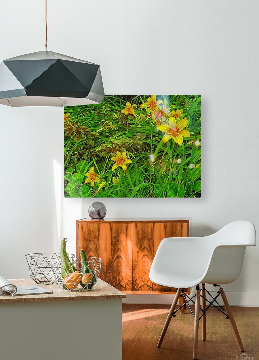Yellow Flower-1  HD Metal print with Floating Frame on Back