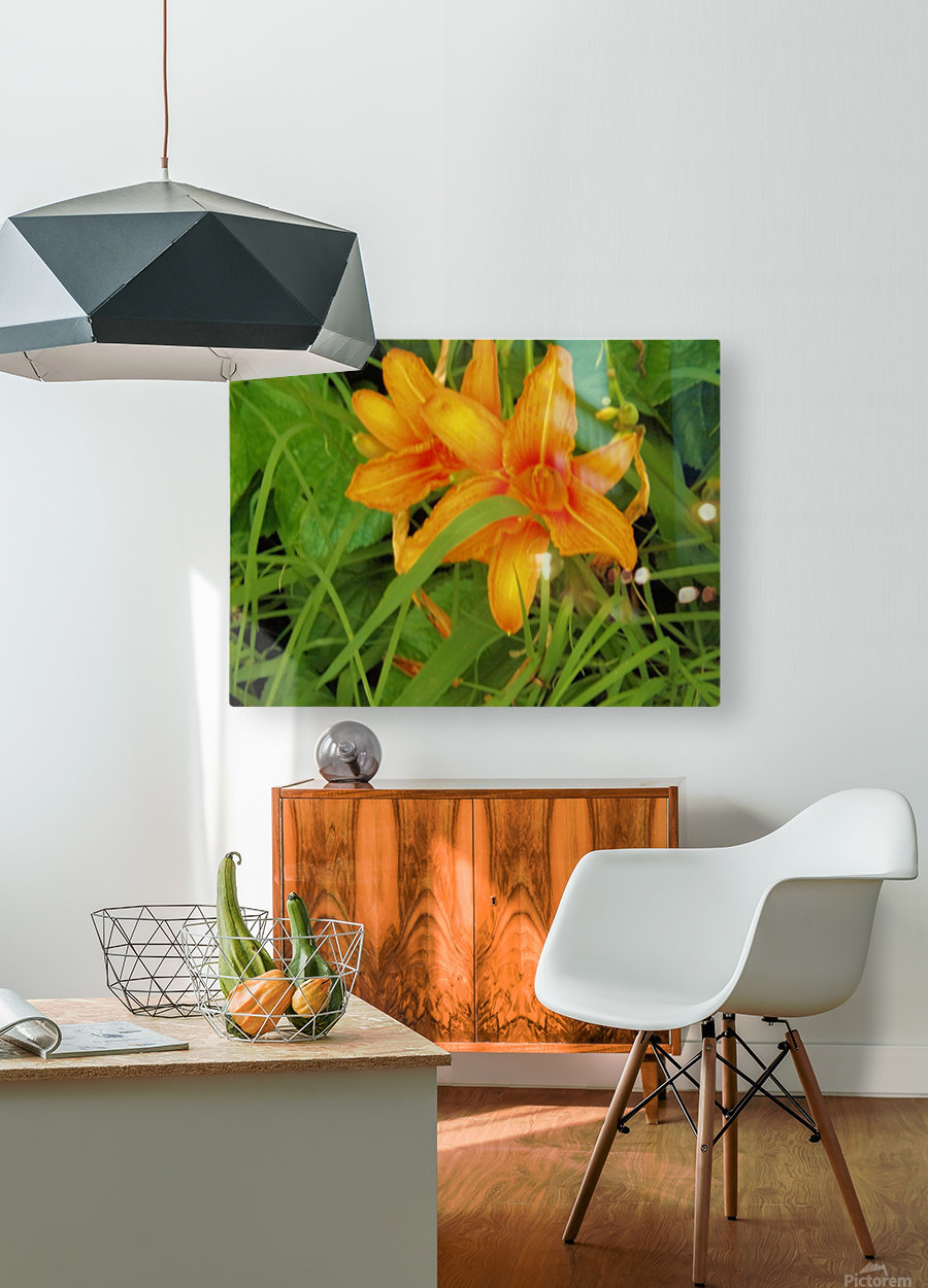 Oranger Lilly 2  HD Metal print with Floating Frame on Back