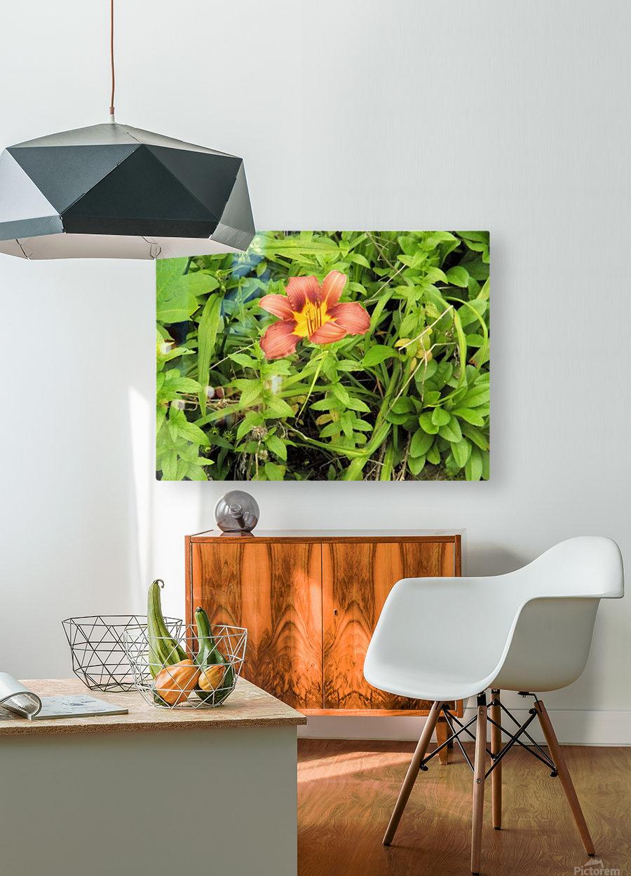 Oranger Lilly 4  Impression métal HD avec cadre flottant sur le dos