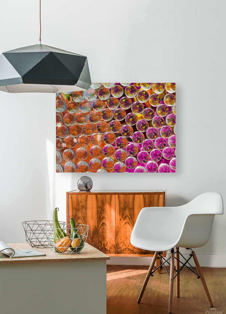 FLOWERS REFRACTION 4  HD Metal print with Floating Frame on Back