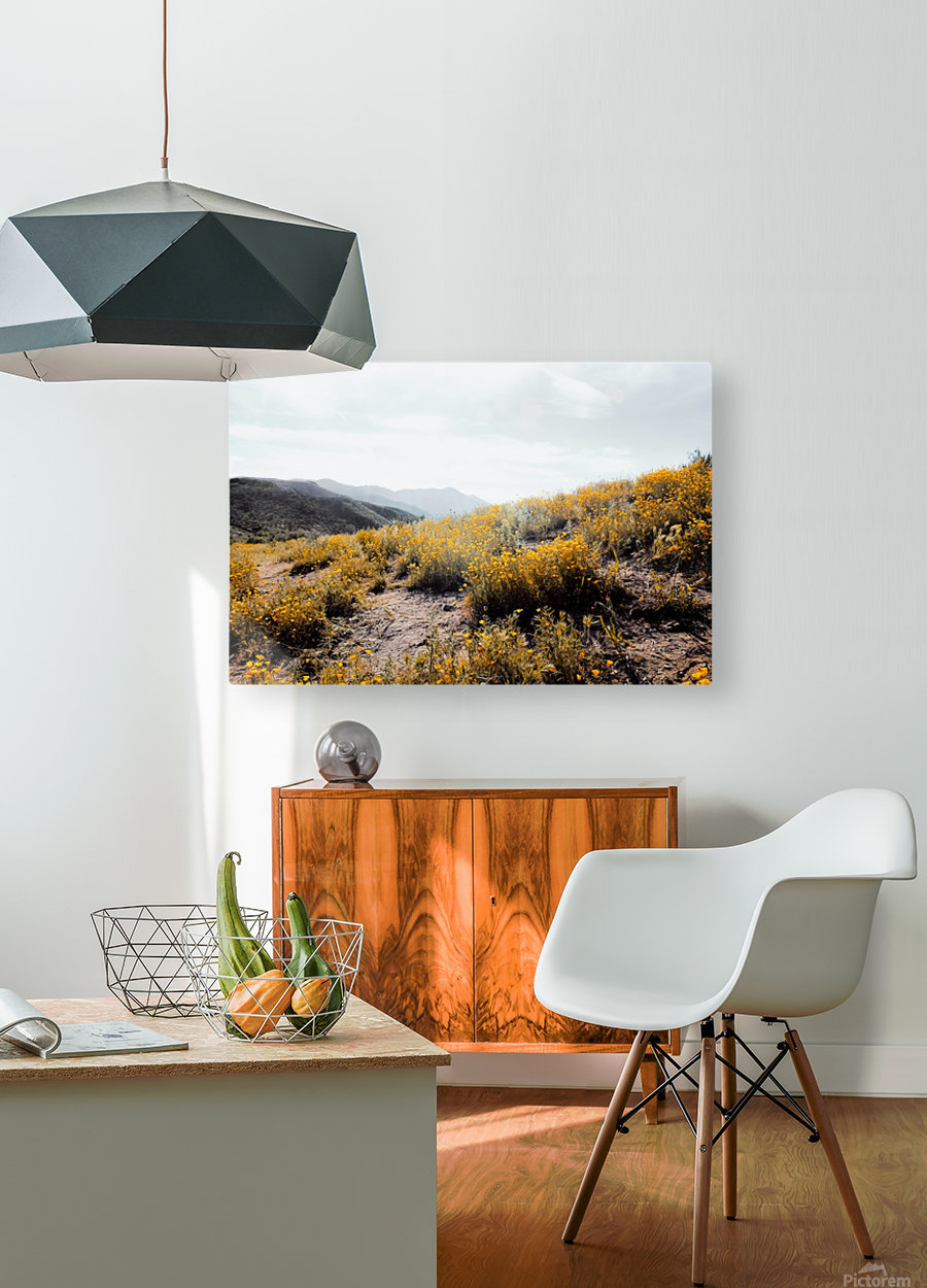 vintage style yellow poppy flower field with summer sunlight  HD Metal print with Floating Frame on Back