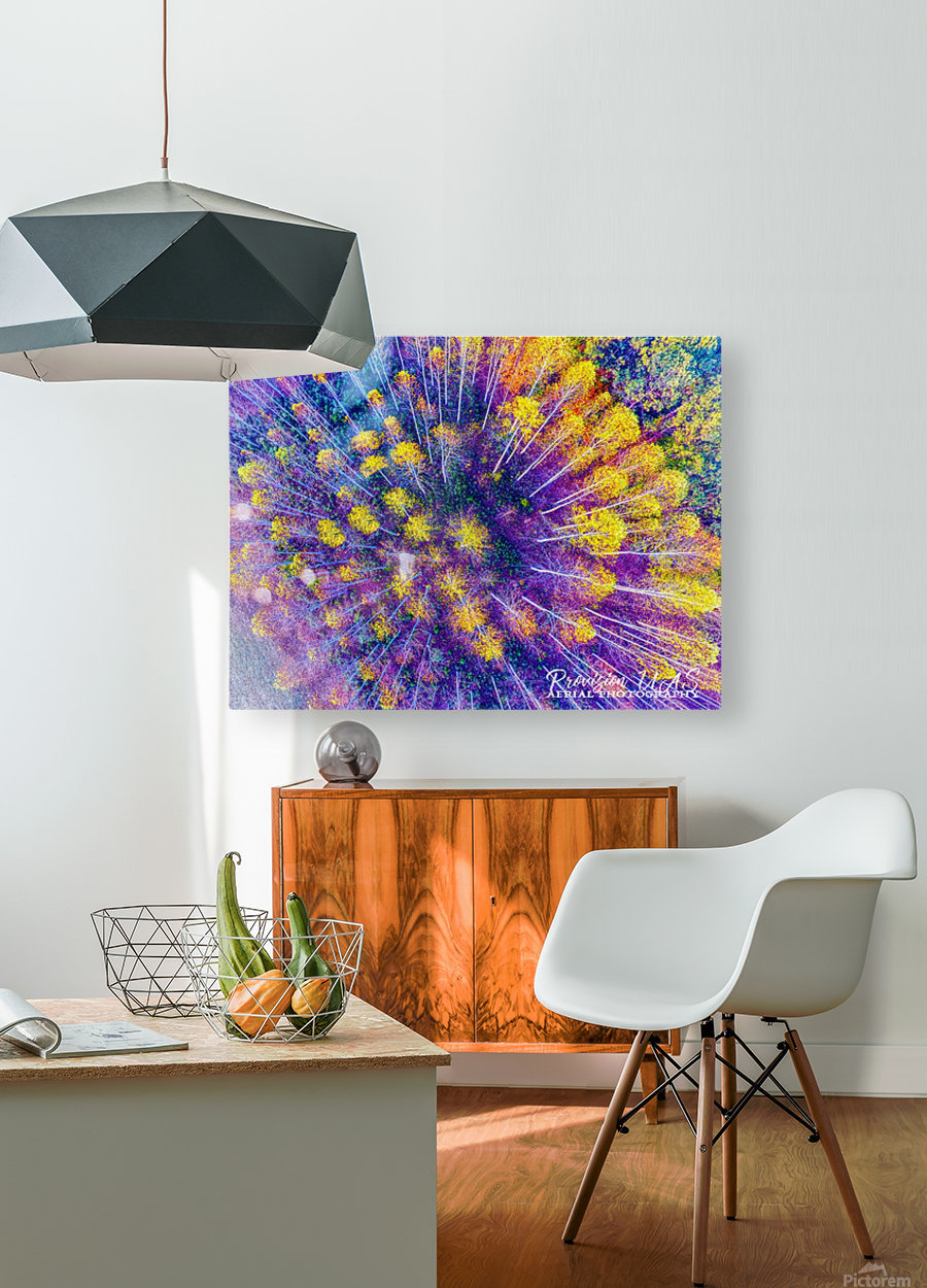 Lawrenceburg, TN | Tennessee Aspens   HD Metal print with Floating Frame on Back