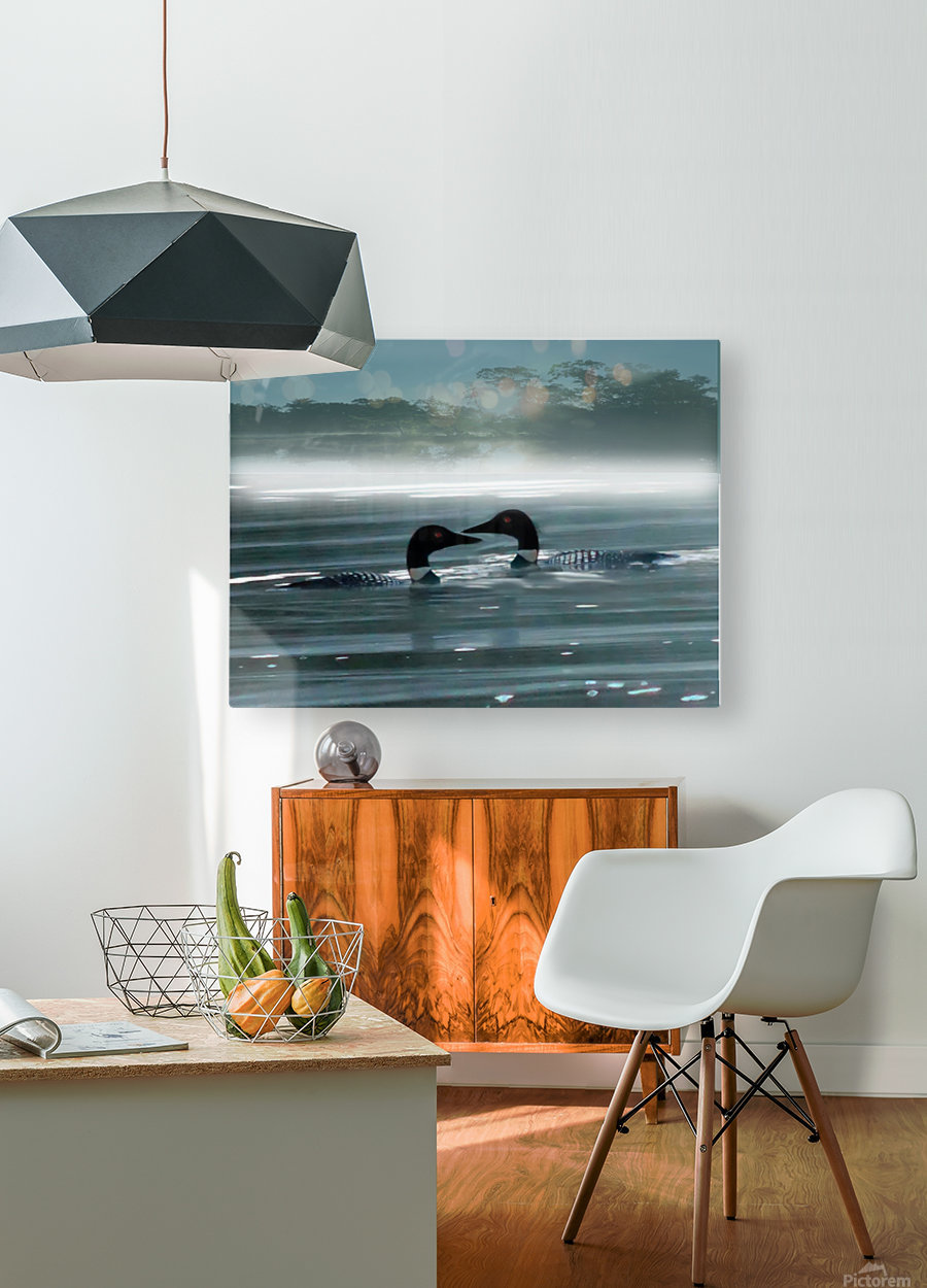 TwoLoonsEnhanced  HD Metal print with Floating Frame on Back