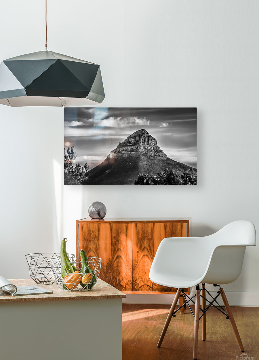 LionsHeadBW  HD Metal print with Floating Frame on Back
