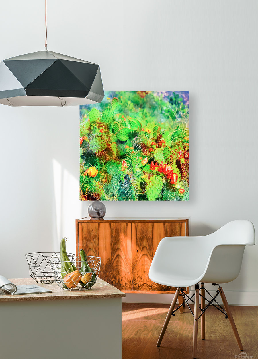 green cactus with yellow and red flower in the desert  HD Metal print with Floating Frame on Back