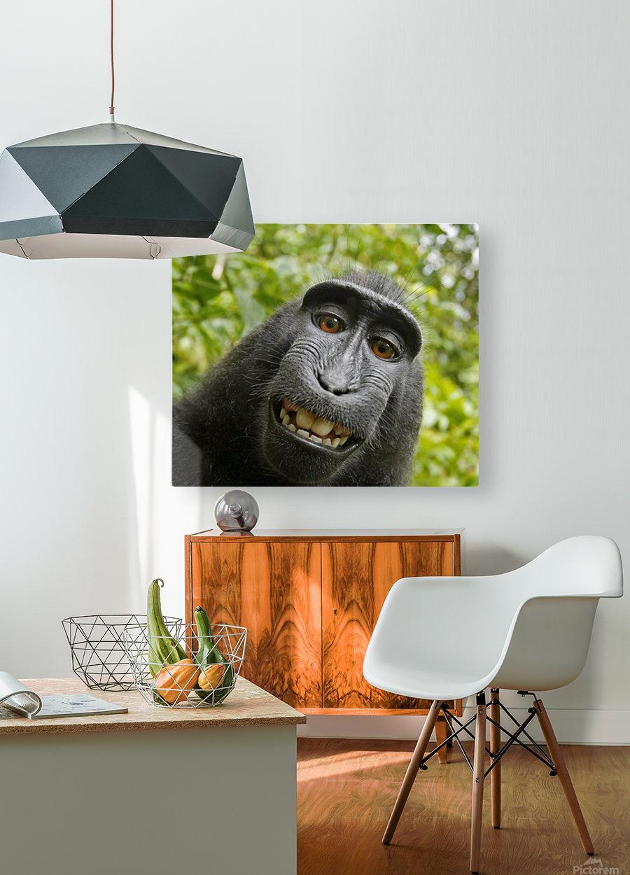monyet  Impression métal HD avec cadre flottant sur le dos