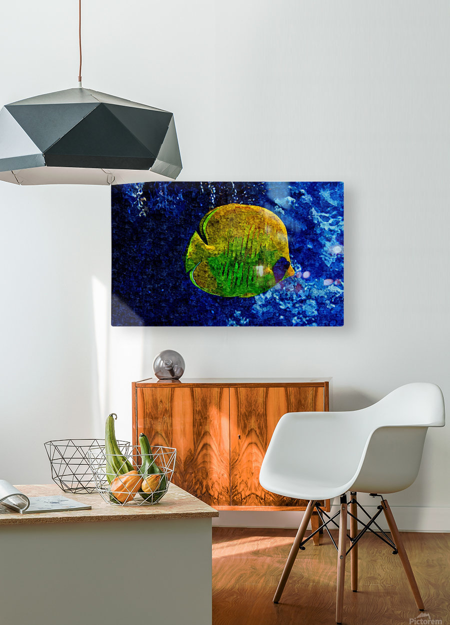Under The Seal Lone  HD Metal print with Floating Frame on Back