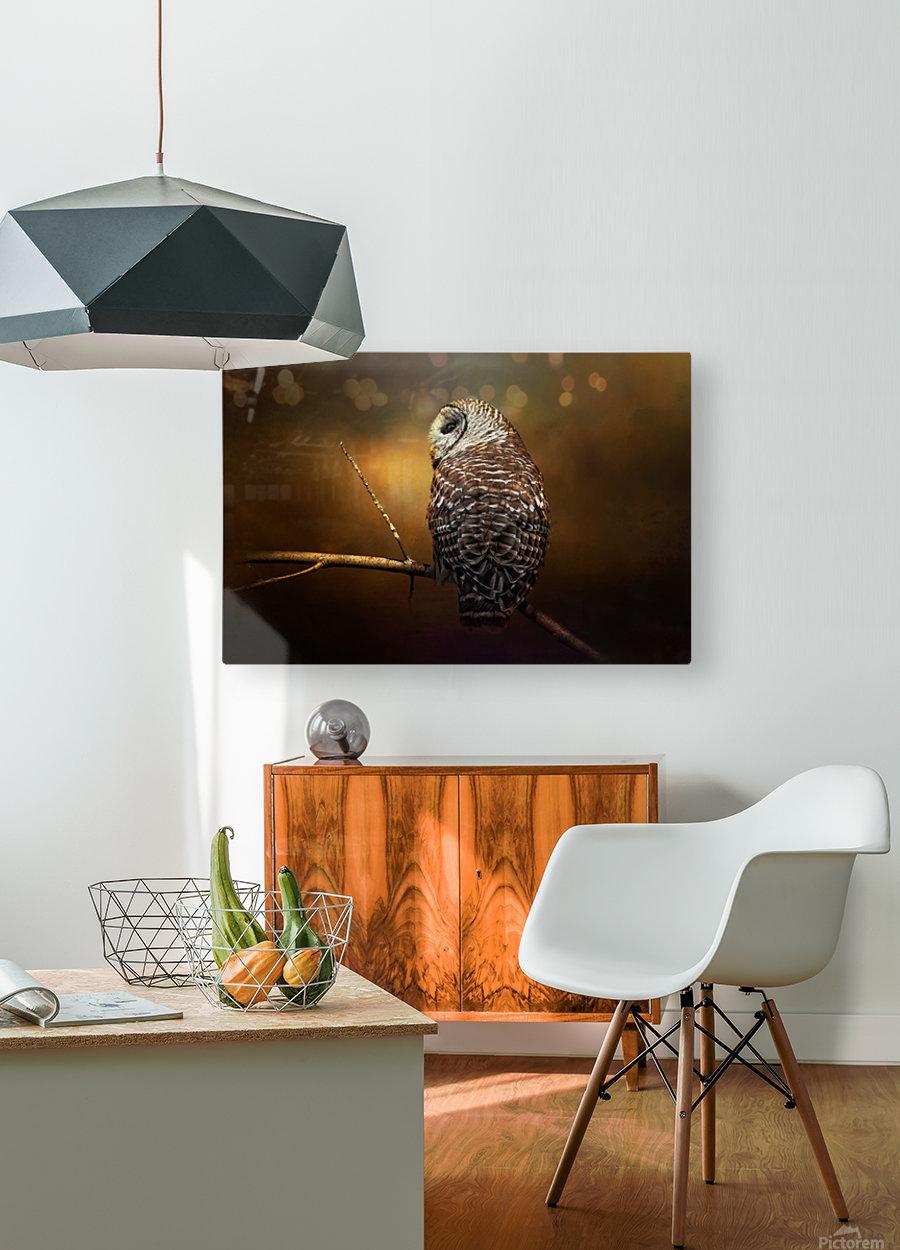 Textured Strix Varia  HD Metal print with Floating Frame on Back
