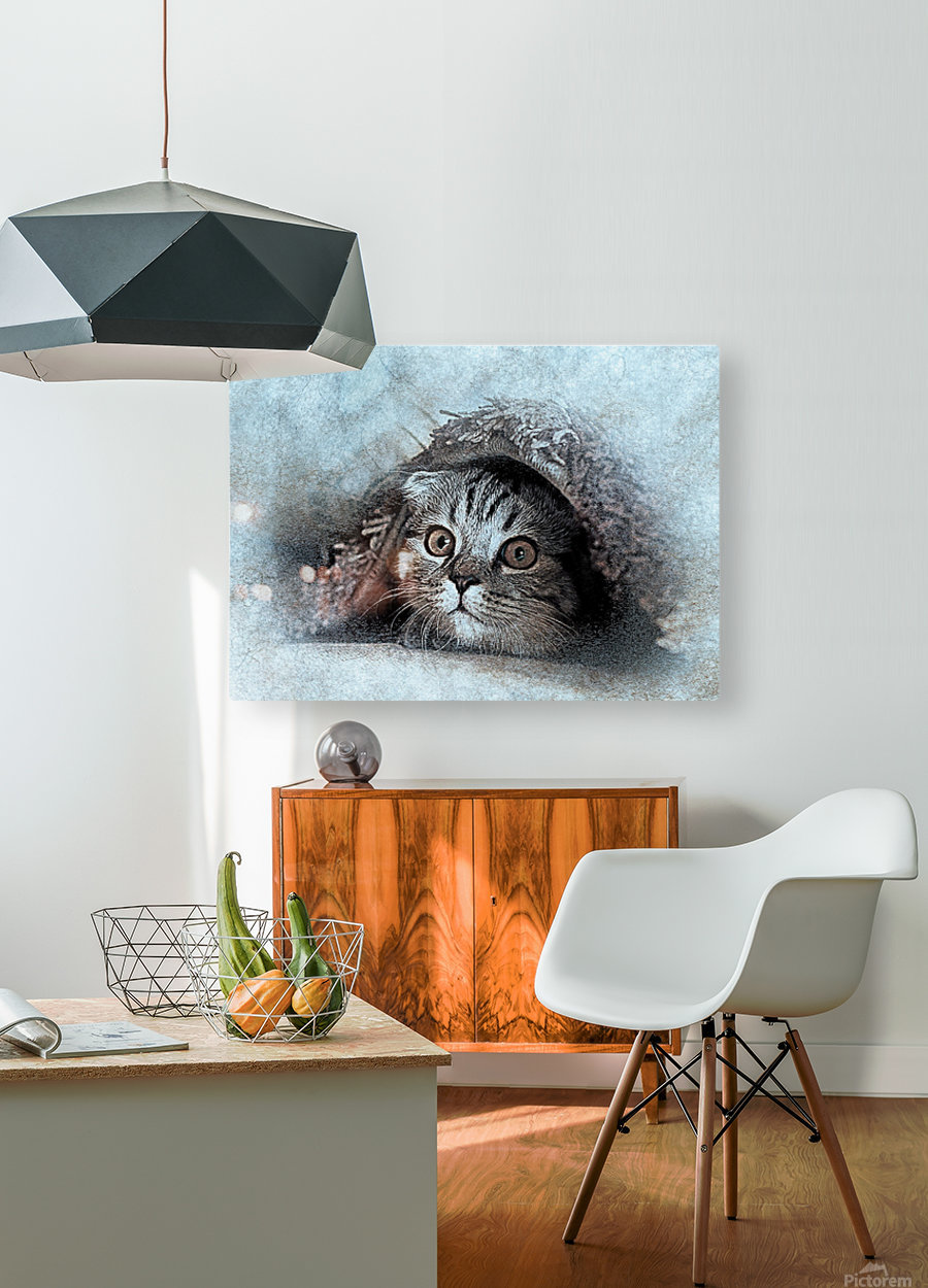 kitty  HD Metal print with Floating Frame on Back