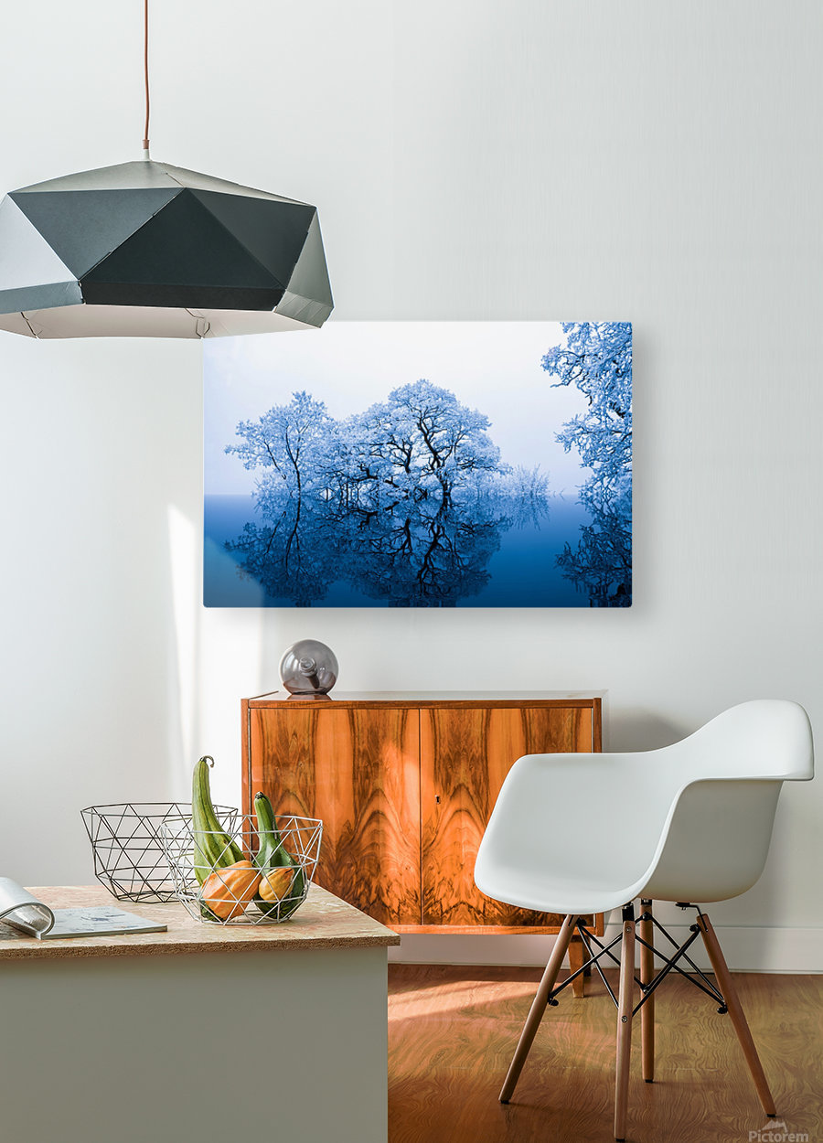 nature  HD Metal print with Floating Frame on Back