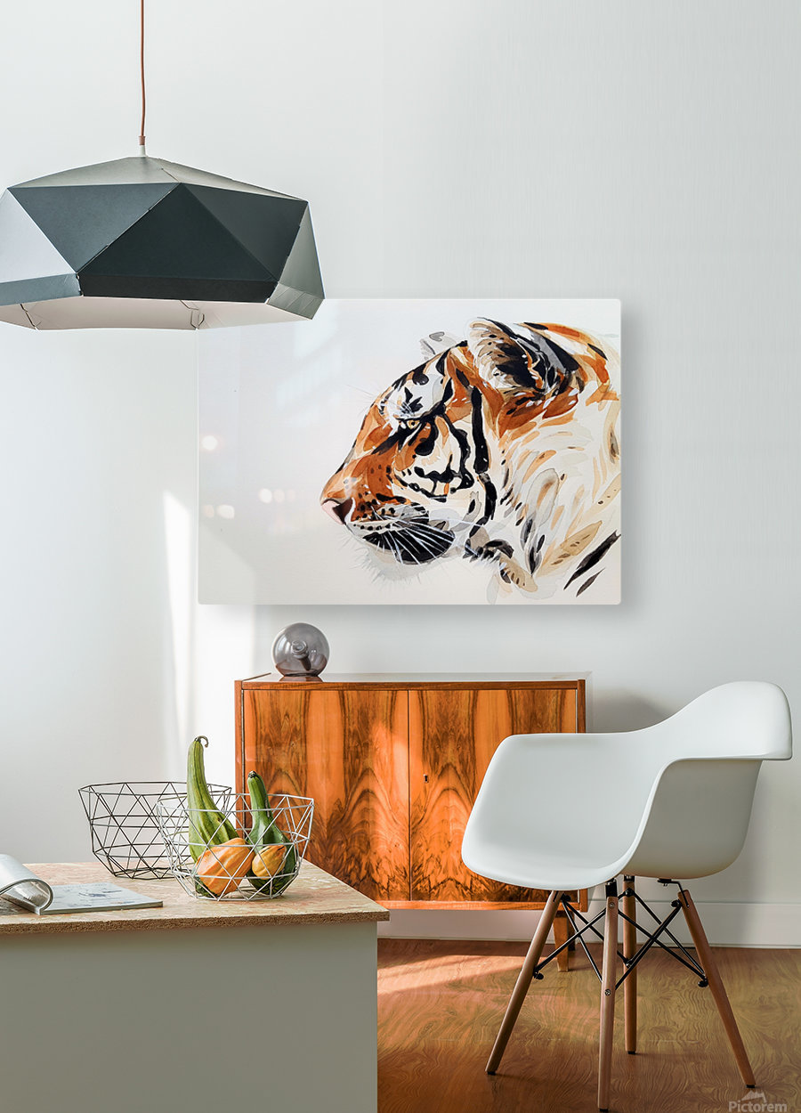 tiger  HD Metal print with Floating Frame on Back