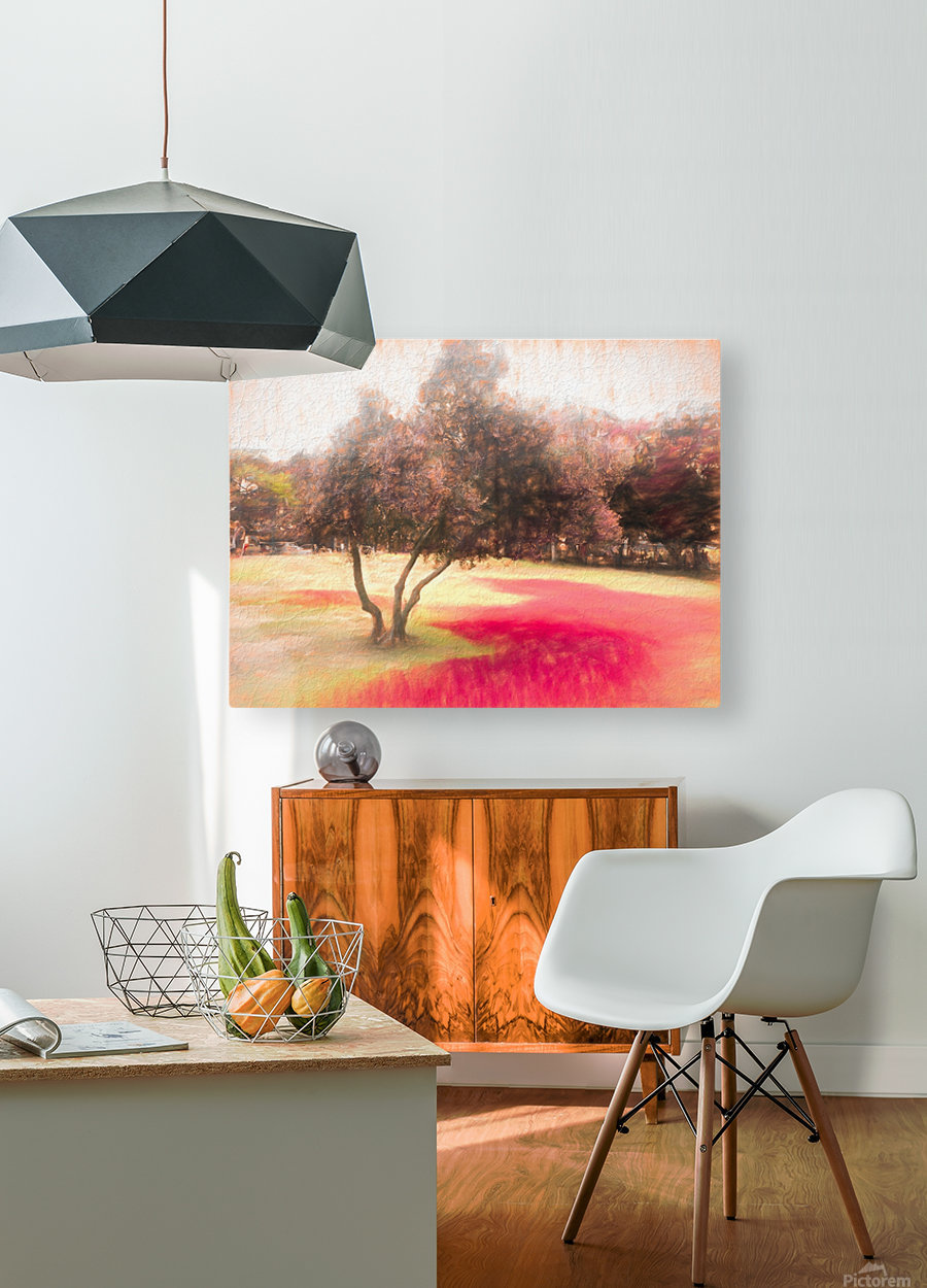 The Raanana Park 1  HD Metal print with Floating Frame on Back