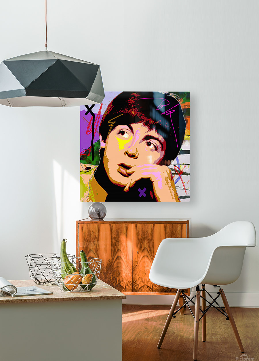 Sir Paul X  HD Metal print with Floating Frame on Back