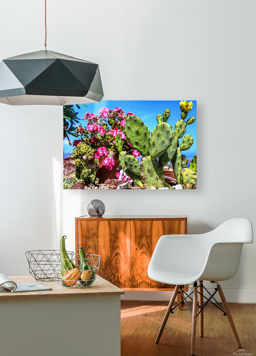 Cactus and colourful Flowers  HD Metal print with Floating Frame on Back