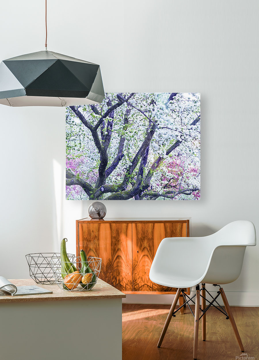Cherry tree flowers  HD Metal print with Floating Frame on Back
