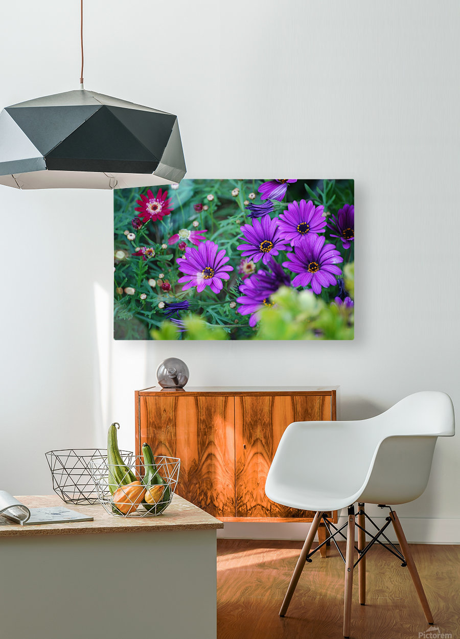 Purple Flowers in Dana Point CA  HD Metal print with Floating Frame on Back
