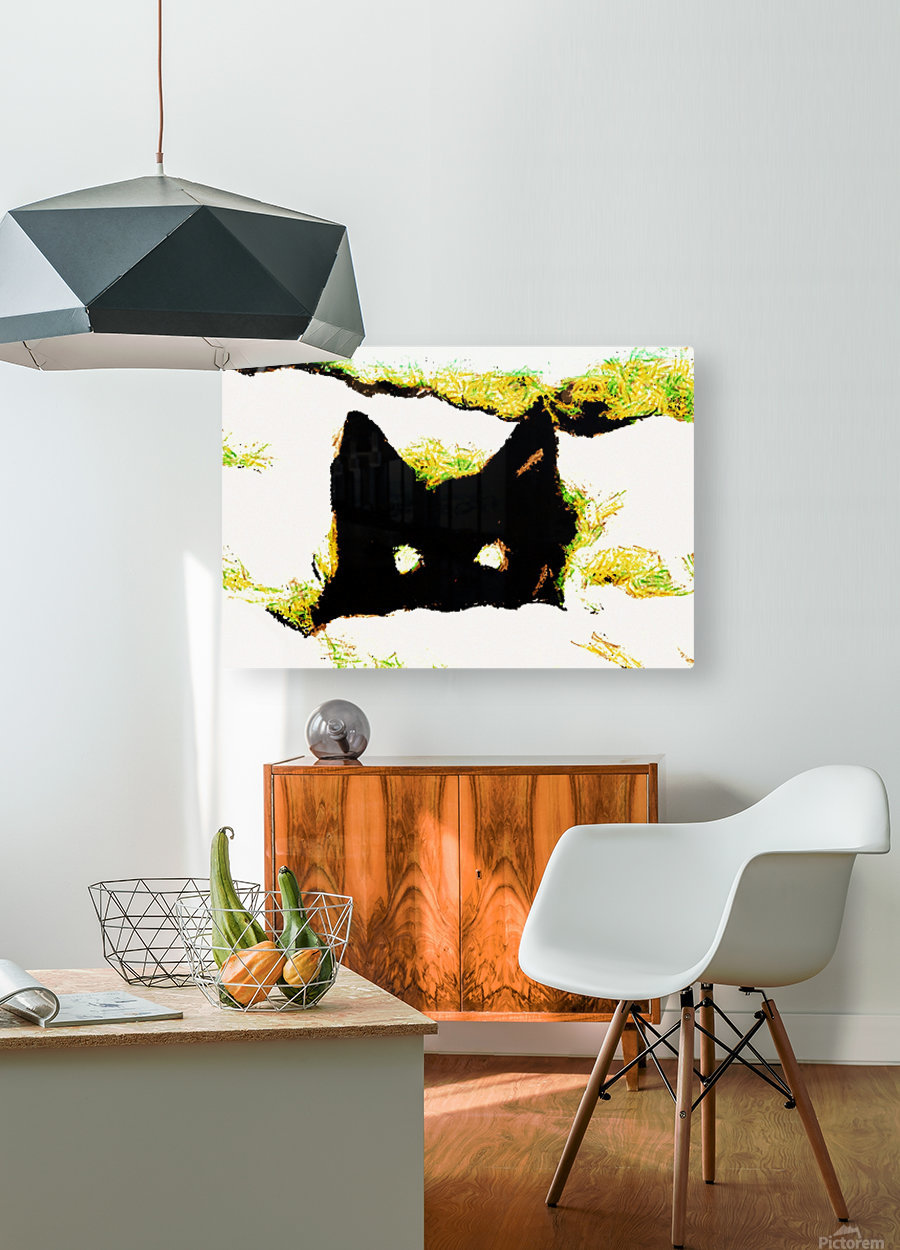 Kitten in snow  HD Metal print with Floating Frame on Back