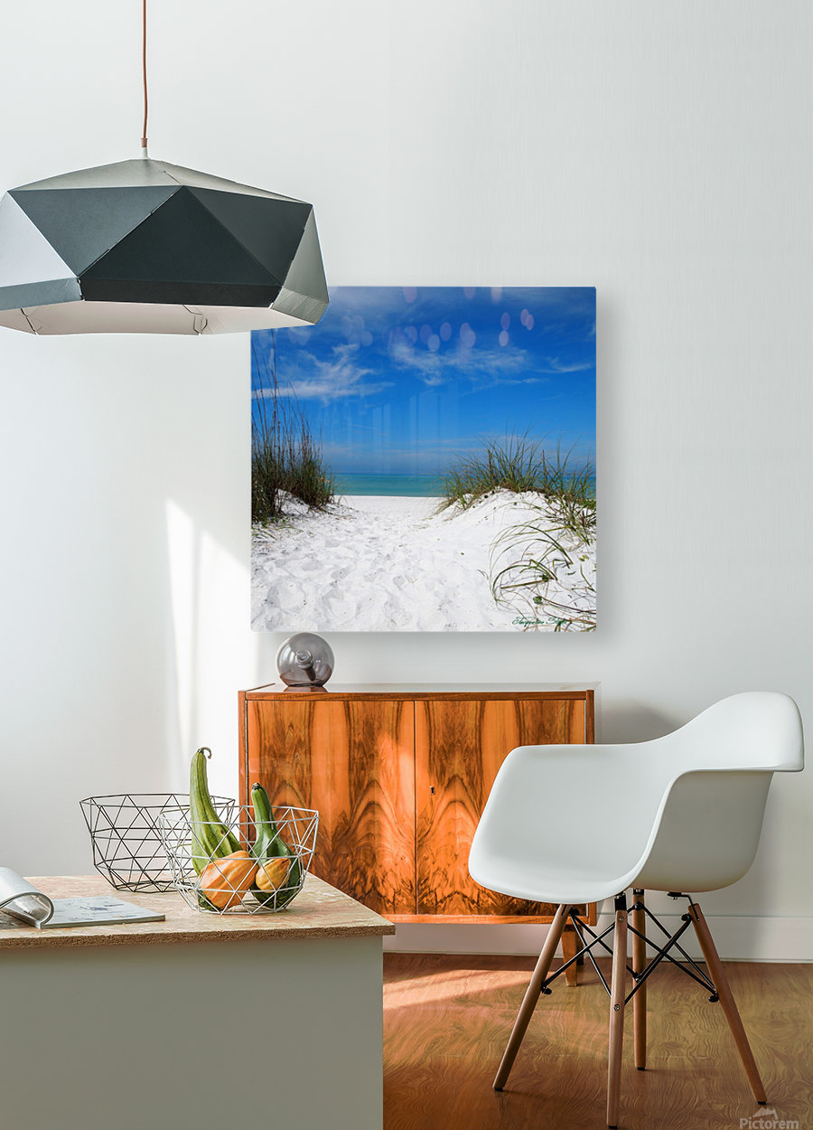 Coquina Dunes  HD Metal print with Floating Frame on Back