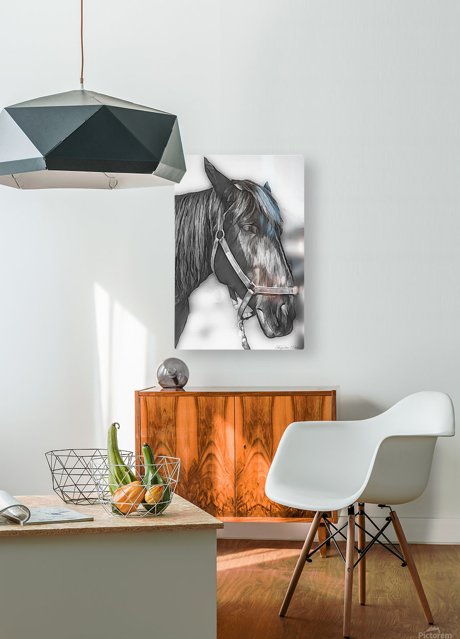 A Real Beauty  HD Metal print with Floating Frame on Back