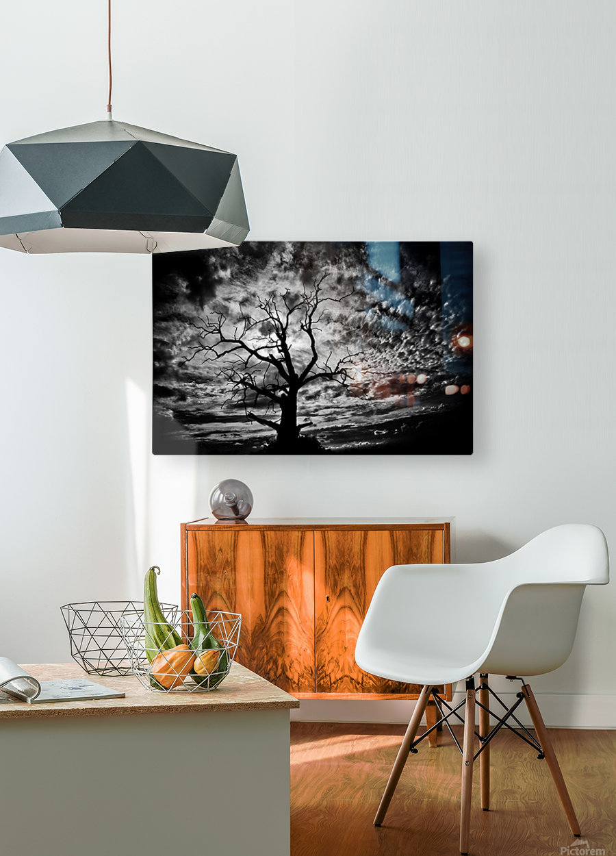 Spooky tree  HD Metal print with Floating Frame on Back