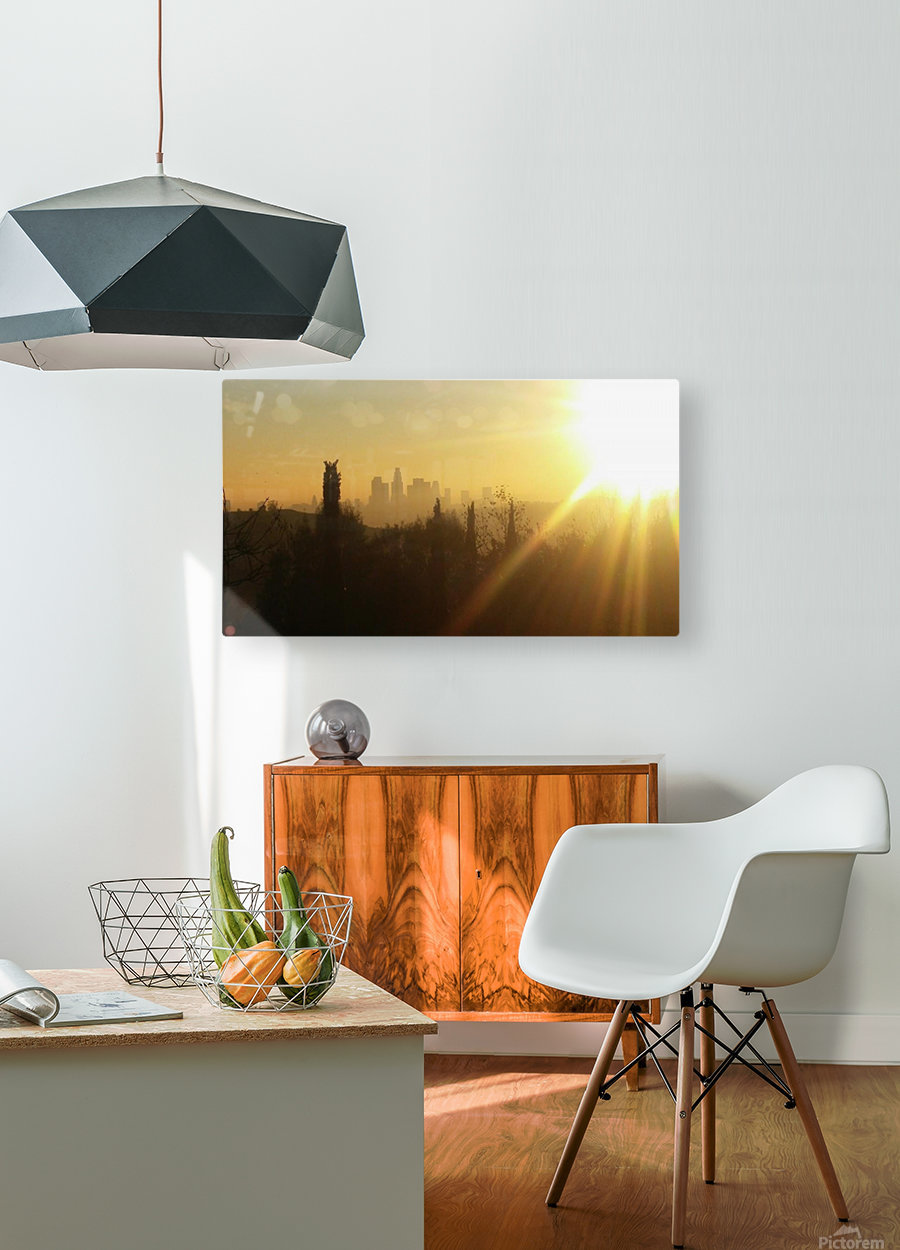 Los Angeles, Ca  HD Metal print with Floating Frame on Back