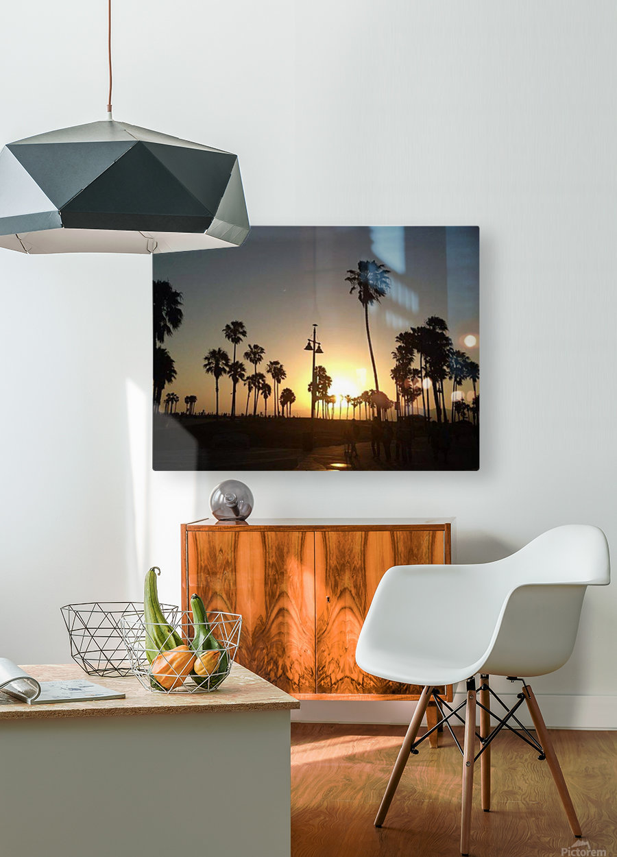Venice Beach, California  HD Metal print with Floating Frame on Back