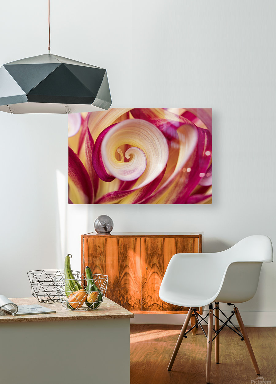 Spirales  HD Metal print with Floating Frame on Back