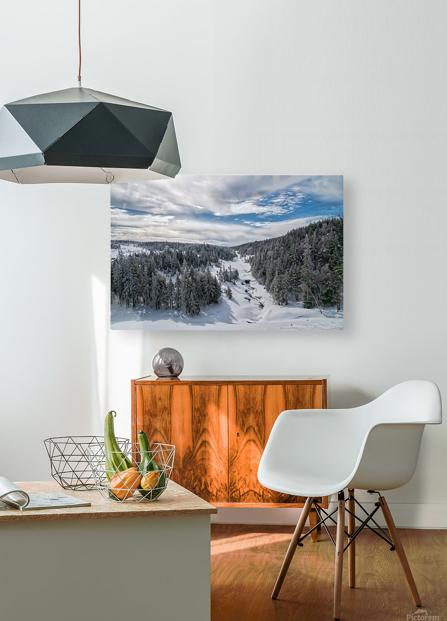 A Boreal Winter  HD Metal print with Floating Frame on Back