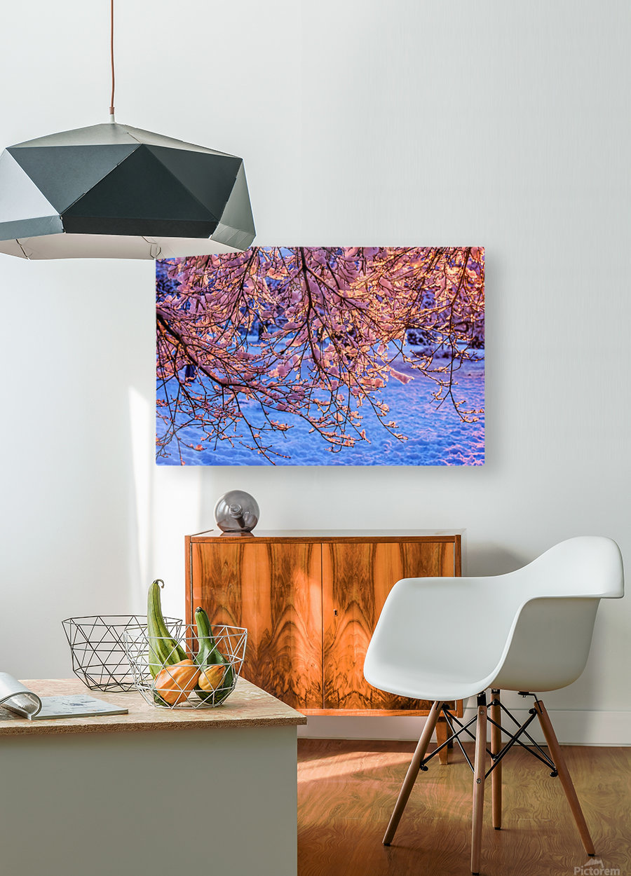 Winter   HD Metal print with Floating Frame on Back
