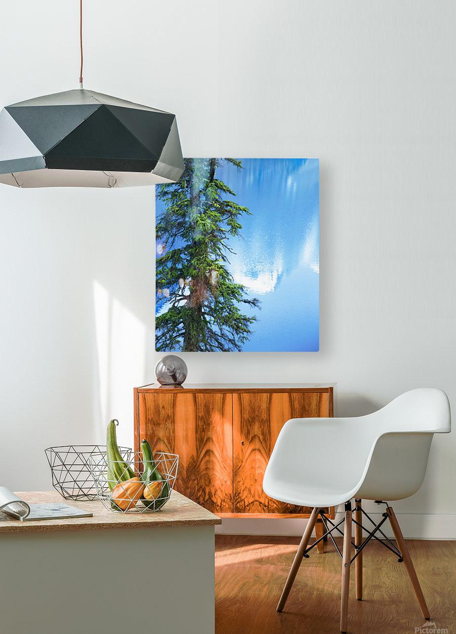 Natural order  HD Metal print with Floating Frame on Back
