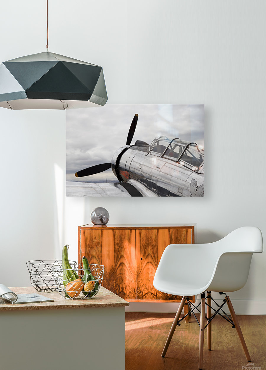 P-53 Nose  HD Metal print with Floating Frame on Back