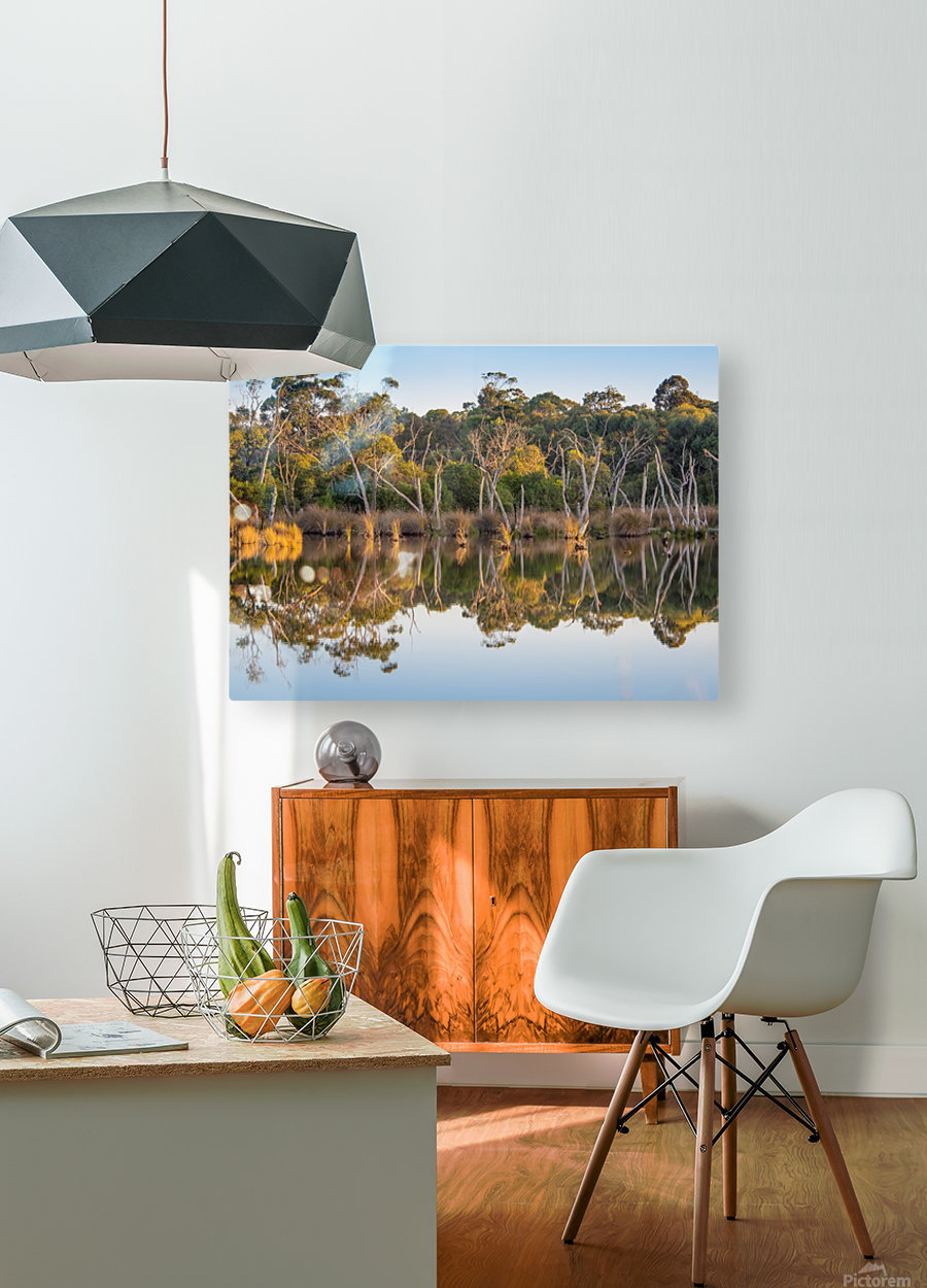 Evening river bank with glassy reflection  HD Metal print with Floating Frame on Back