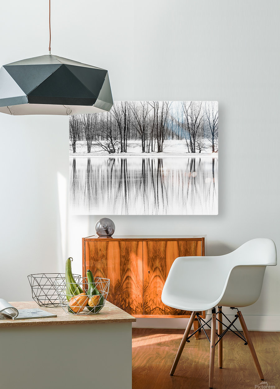 Reflexion  HD Metal print with Floating Frame on Back