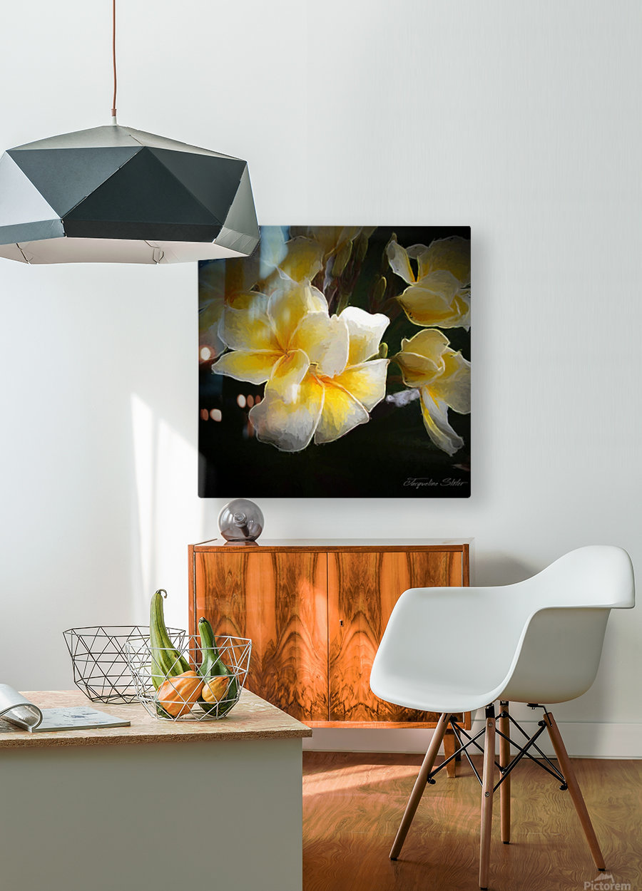 A Symbol of Grace  HD Metal print with Floating Frame on Back