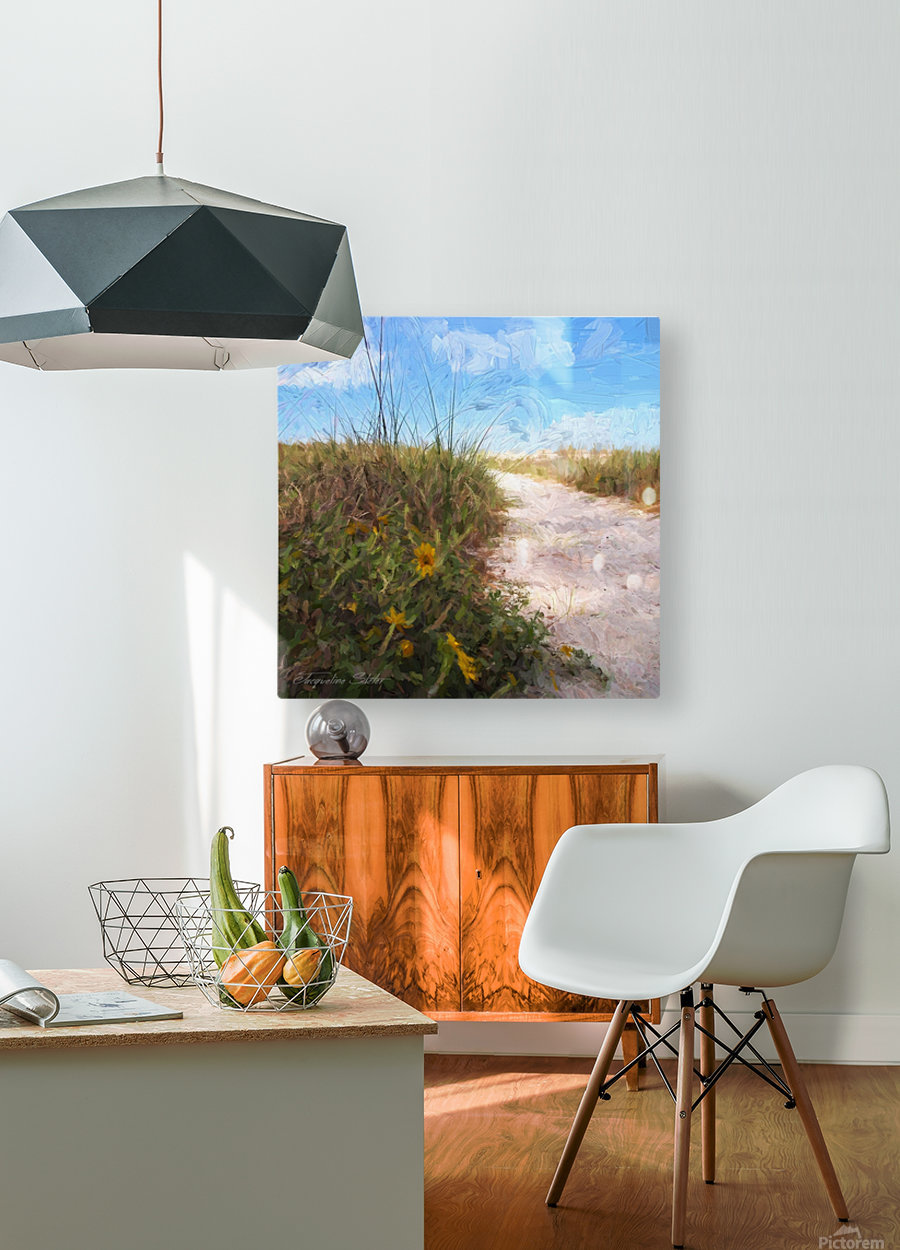 A Trail to the Beach  HD Metal print with Floating Frame on Back