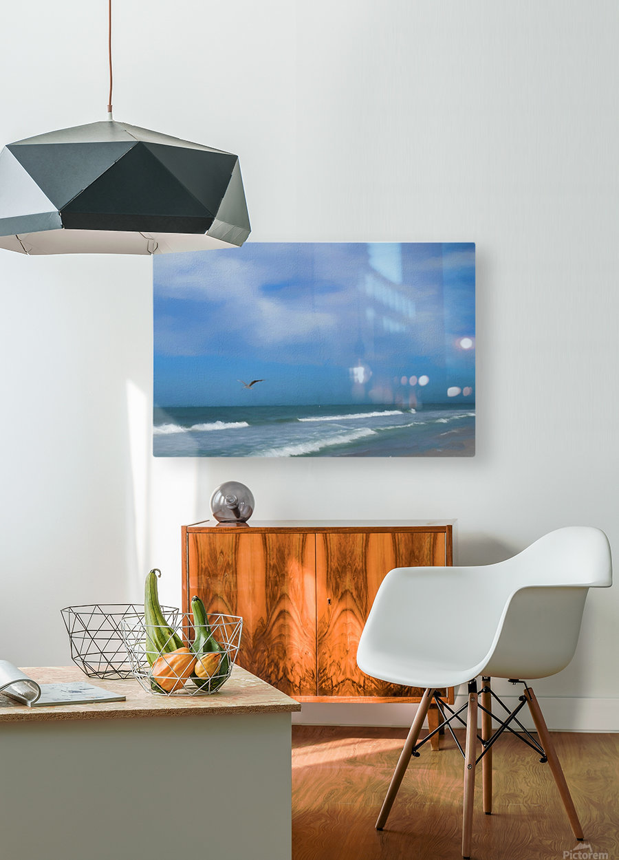 Flying Solo  HD Metal print with Floating Frame on Back