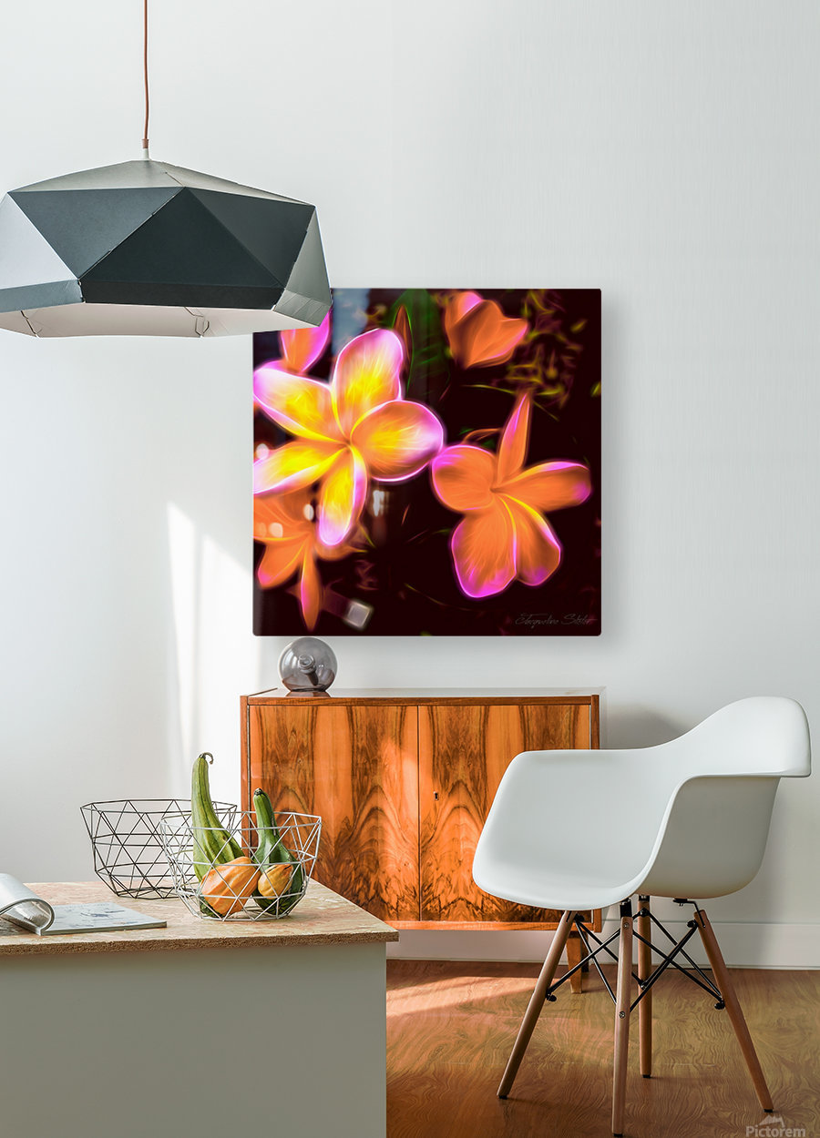 Frangipanis On The Glow  HD Metal print with Floating Frame on Back