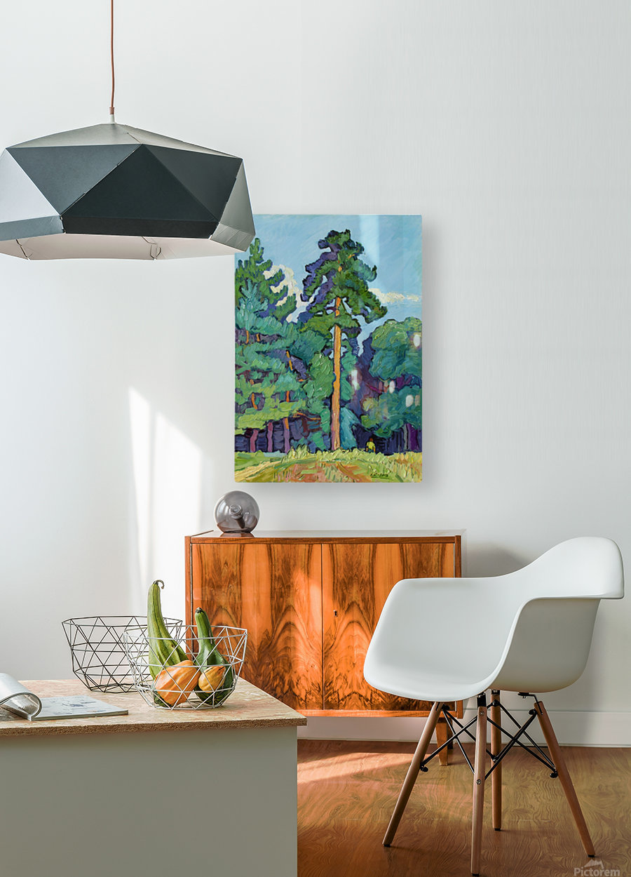 Edge of the Forest  HD Metal print with Floating Frame on Back
