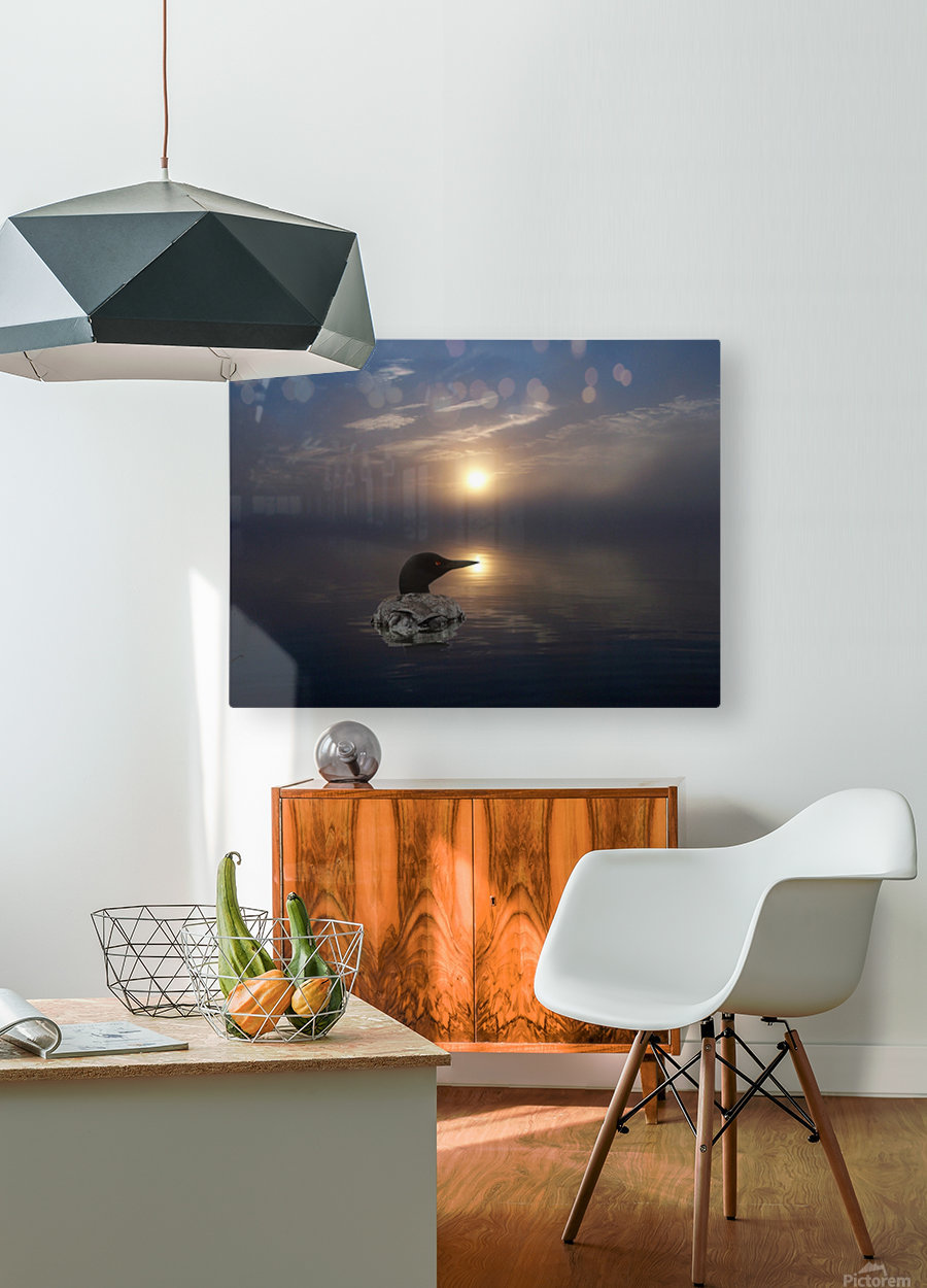 LoonAtSunrise_1527463927.19  HD Metal print with Floating Frame on Back